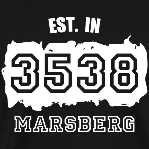 Established 3538 Marsberg - Männer Premium T-Shirt
