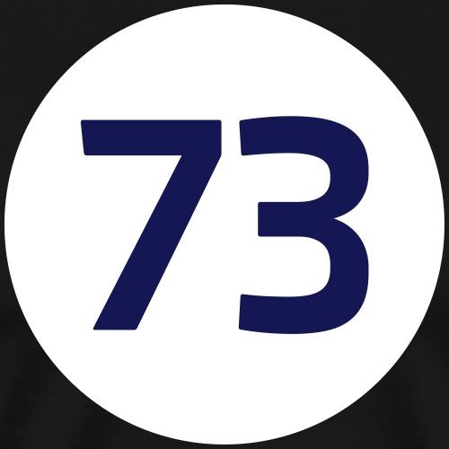 73 the best number BIG BANG Freak Theorie These - Men's Premium T-Shirt