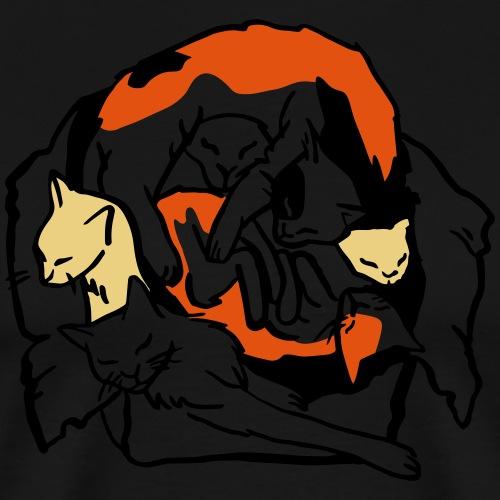 Katzen in Box - Männer Premium T-Shirt