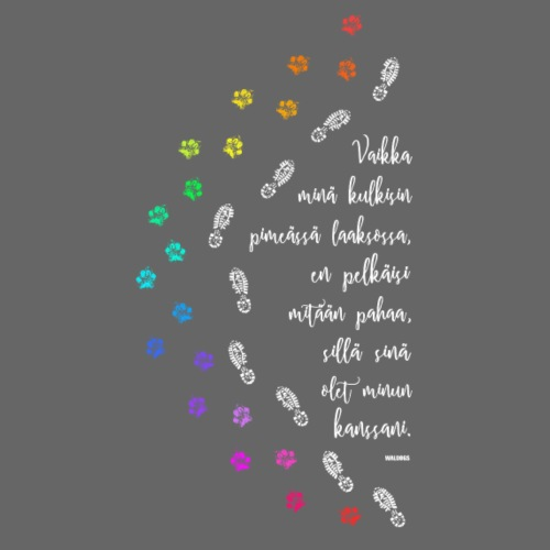 Paimeneni Sateenkaari - Miesten premium t-paita