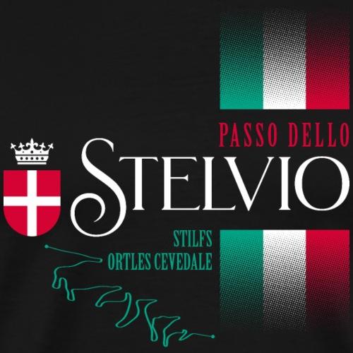 Passo Dello Stelvio 2021 Design - Men's Premium T-Shirt