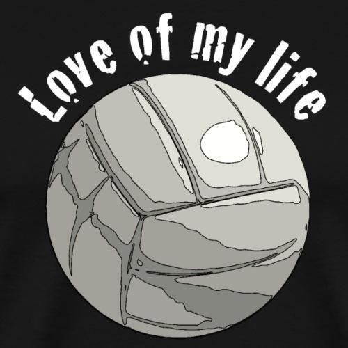 volleyblove2 - Männer Premium T-Shirt