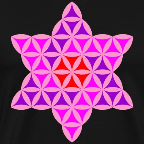 Star Of Life, Colorful Geometric Shape - Men's Premium T-Shirt