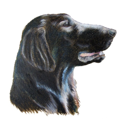flatcoated retriever color - Herre premium T-shirt