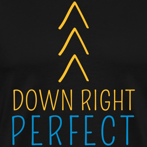 DOWN RIGHT PERFECT >>> | The colorful zebra - Men's Premium T-Shirt