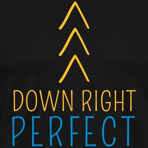 DOWN RIGHT PERFECT >>> | The colorful zebra - Men's Premium T-Shirt