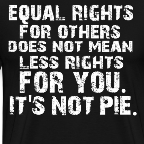 EUQALS RIGHTS DOES NOT MEAN LESS RIGHTS FOR YOU ! - Männer Premium T-Shirt