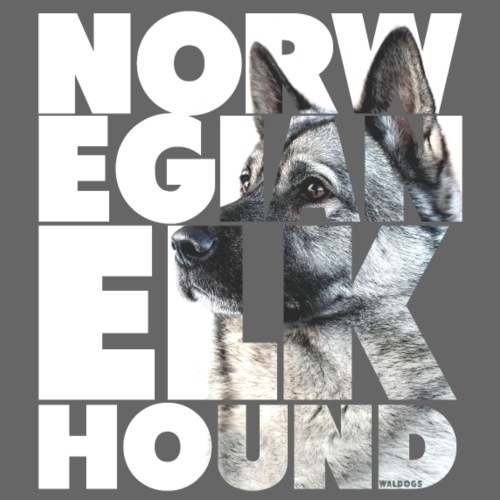 NASSU Norjanharmaa - Miesten premium t-paita