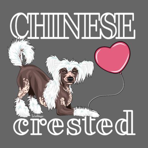 Chinese Crested IV - Miesten premium t-paita