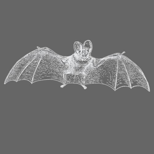 White Bat - Männer Premium T-Shirt