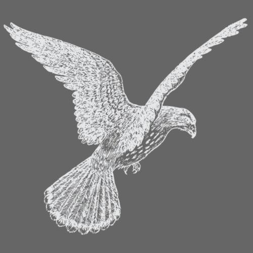 Ruettelfalke - Männer Premium T-Shirt