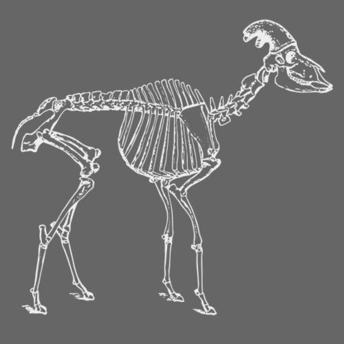 Skelett Schaf weiss - Männer Premium T-Shirt