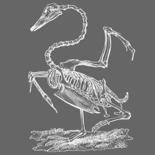 Pelican Skeleton - Männer Premium T-Shirt