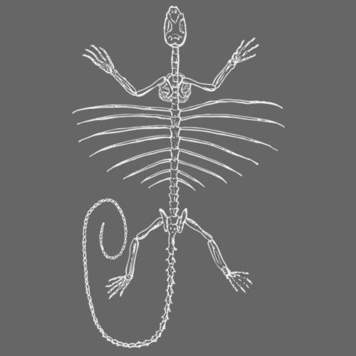 Skelett Flugechse weiss - Männer Premium T-Shirt