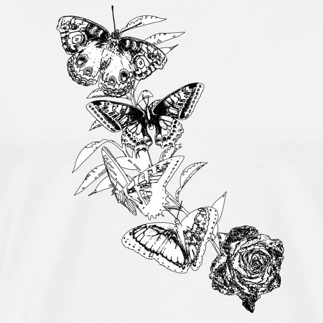 Black and White Butterflies and Rose