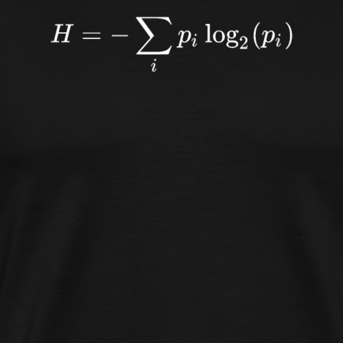 Information theory math and physics formula - Men's Premium T-Shirt