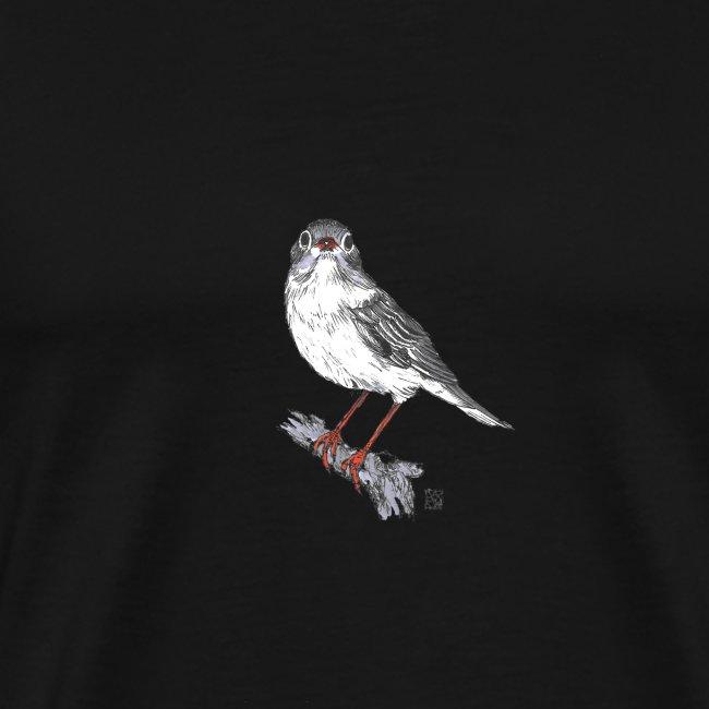 Vogel, Lerche