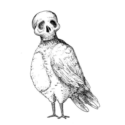 skull bird White alpha - T-shirt Premium Homme