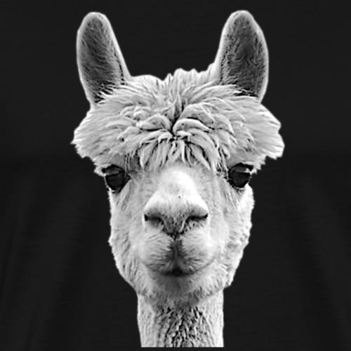 Alpaka Lama Kamel Peru Anden Südamerika Wolle - Männer Premium T-Shirt