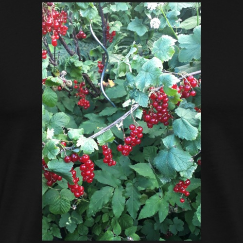 Rote Johannisbeeren an Strauch - Männer Premium T-Shirt