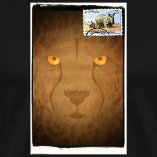 Greetings from Botswana - Camiseta premium hombre