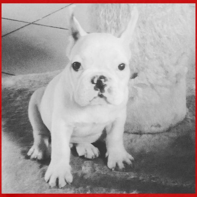Billy Puppy
