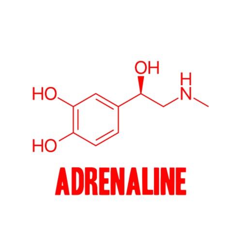 Adrenaline - Camiseta premium hombre