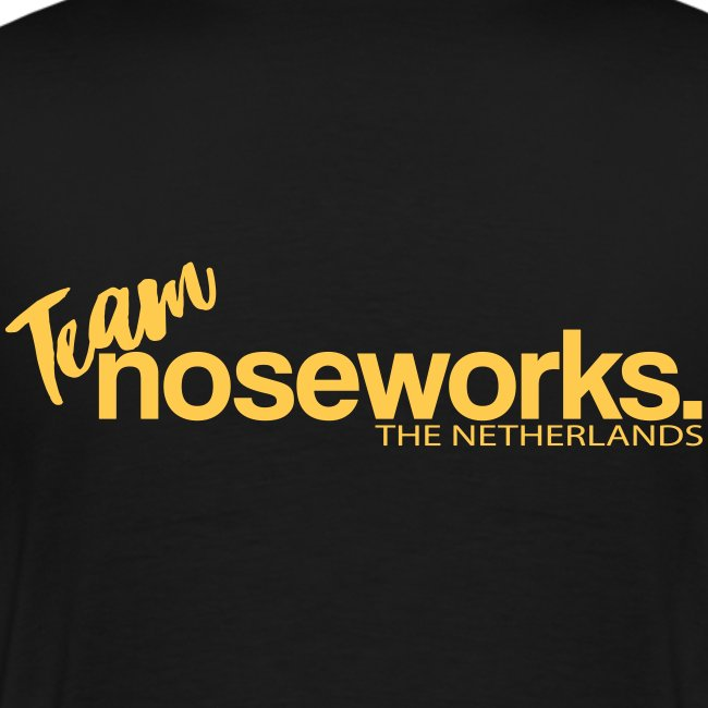 TeamNWnethelands3