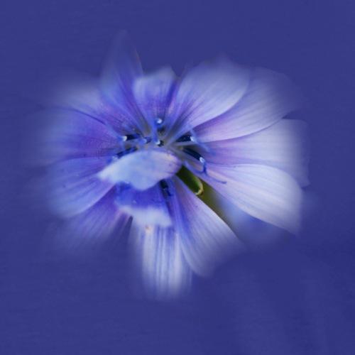 I feel like flowering - Mannen Premium T-shirt