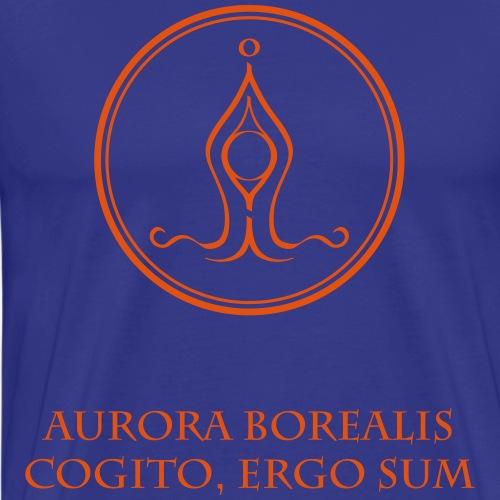 Spirit Power MIGHT - Aurora Borealis - Männer Premium T-Shirt