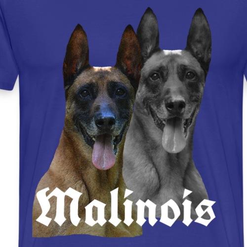 Hund,Hunde,Hundekopf ,Malinois ,Hundegesicht, Mali - Männer Premium T-Shirt