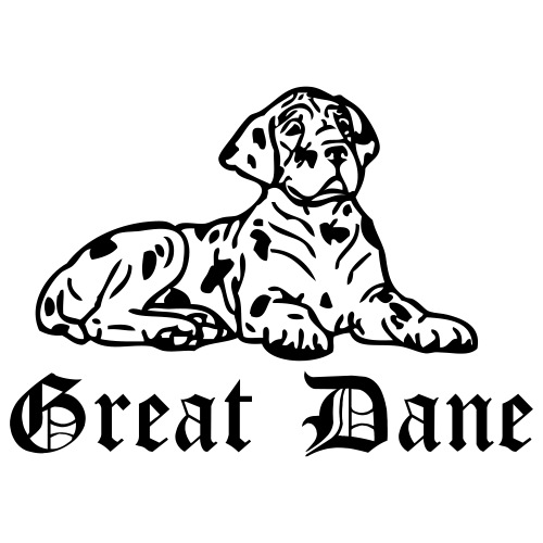Dane - www.dog-power.nl - Mannen Premium T-shirt