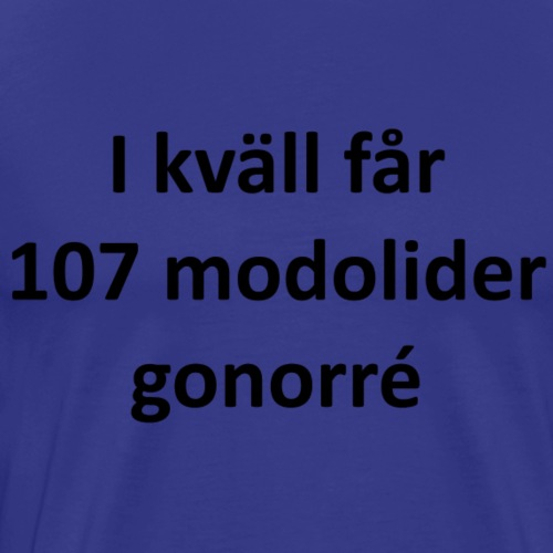 En kväll i Övik - Premium-T-shirt herr