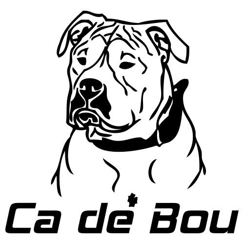 cadebou - www.dog-power.nl - Mannen Premium T-shirt