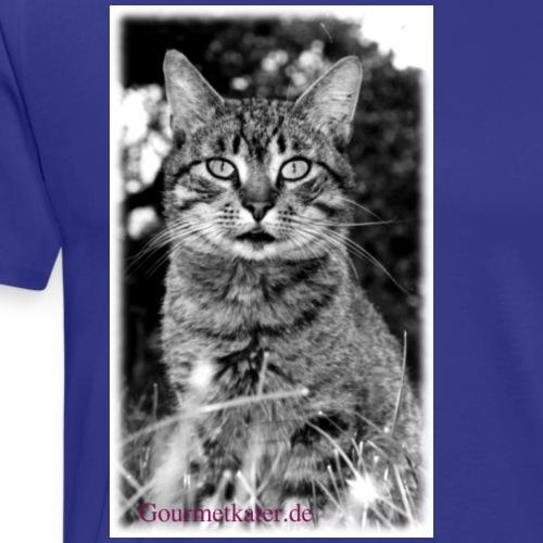 Tiger-Tom - Männer Premium T-Shirt