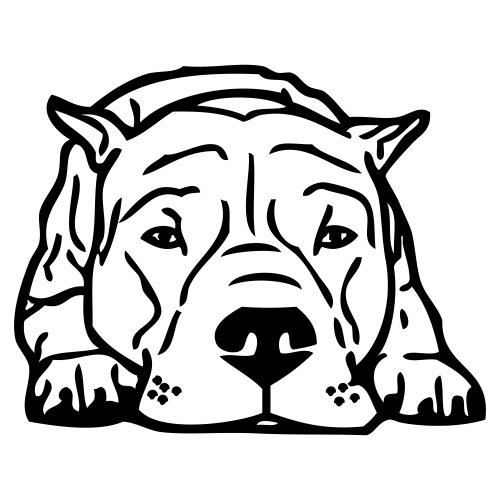 dogo - www.dog-power.nl - Mannen Premium T-shirt