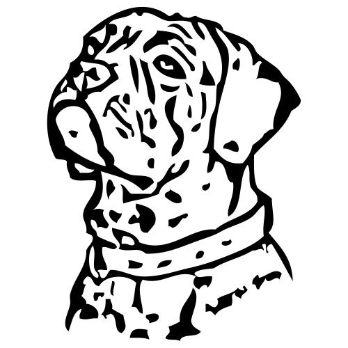 corso - www.dog-power.nl - Mannen Premium T-shirt