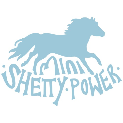 Shetty Power - Männer Premium T-Shirt