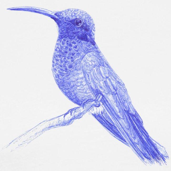 Hummingbird with ballpoint pen