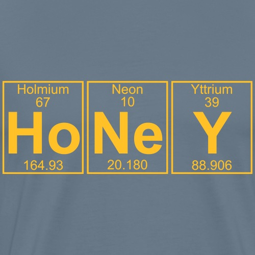Ho-Ne-Y (honey) - Full - Men's Premium T-Shirt