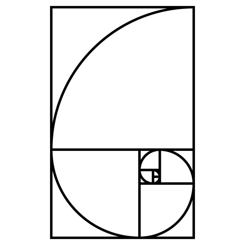 Fibonaccispirale - Männer Premium T-Shirt