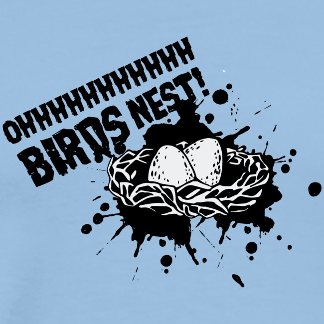 Oh Birds Nest Without Bird