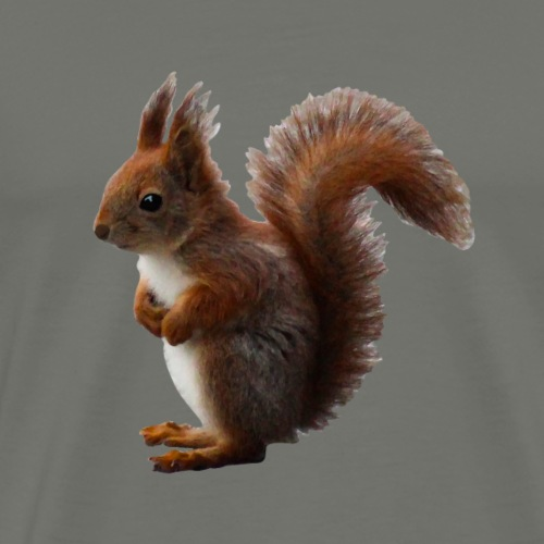 Eichhörnchen natürlich - Männer Premium T-Shirt