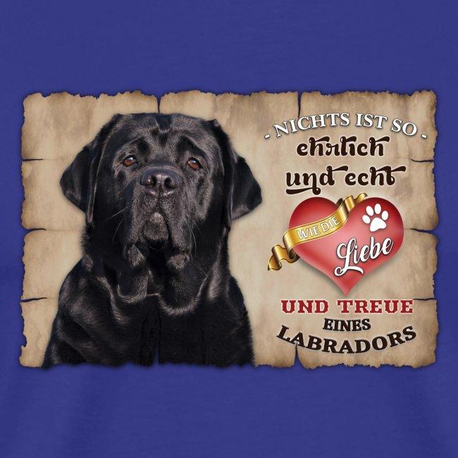 Schwarzer Labrador echte Treue Liebe