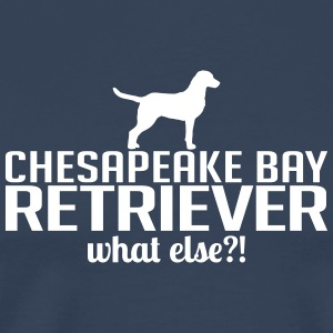 CHESAPEAKE BAY RETRIEVER what else - Men's Premium T-Shirt