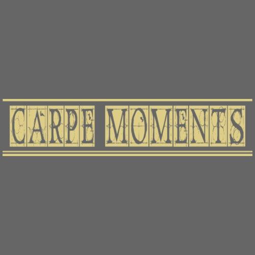 Carpe Moments Carpe Diem - Men's Premium T-Shirt