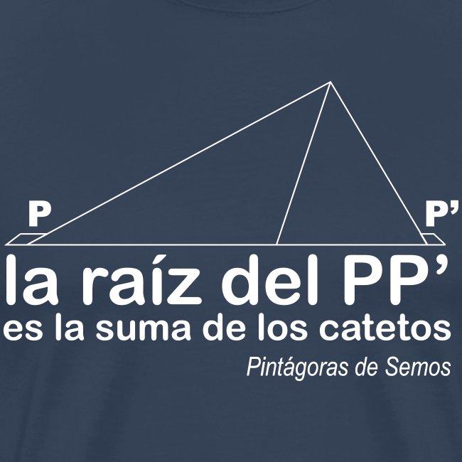 Teorema de Pintágoras