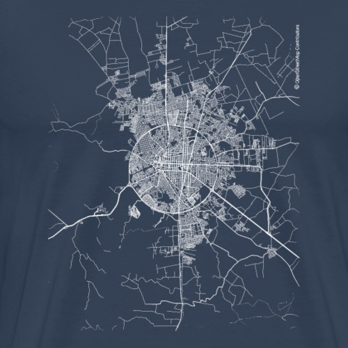 Minimal Feira de Santana city map and streets - Men's Premium T-Shirt