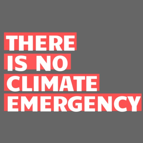 There is no climate emergency - Miesten premium t-paita