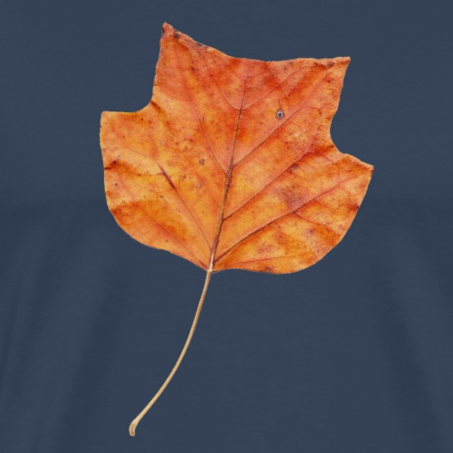 Herbst-Blatt - Männer Premium T-Shirt